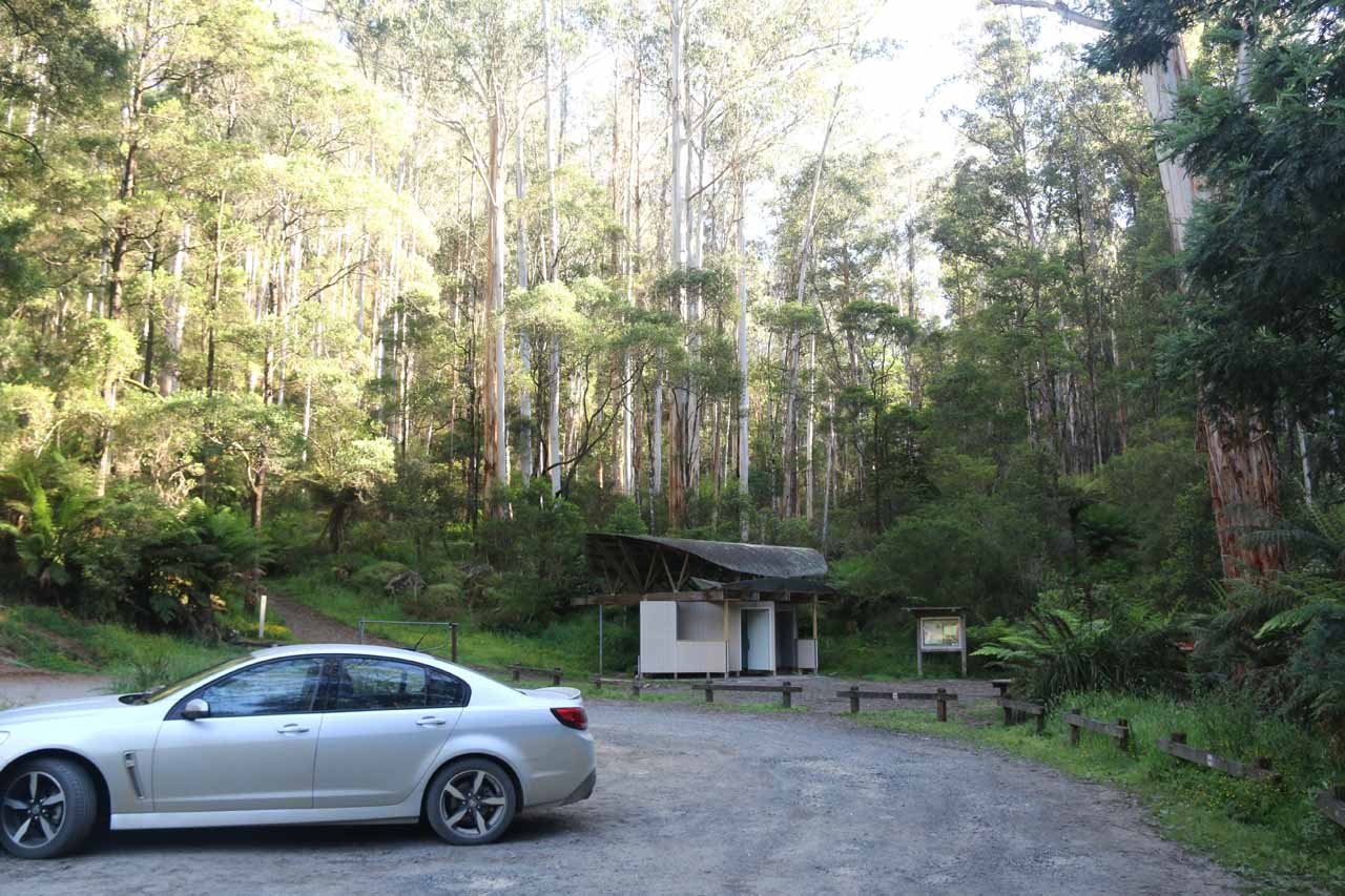 Getting started from the car park at the Toorongo Falls Scenic Reserve