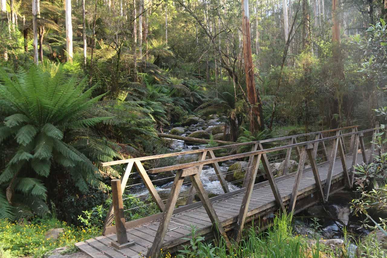 The footbridge over the Toorongo River