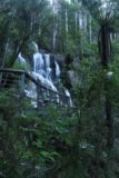 Toorongo_Falls_17_026_11222017 - Looking up towards the Toorongo Falls and lookout platform just as I was approaching it during my November 2017 visit