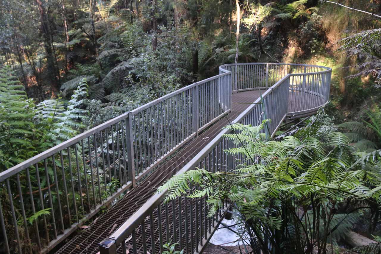 The metal viewing area for Amphitheatre Falls protruding onto the Toorongo River