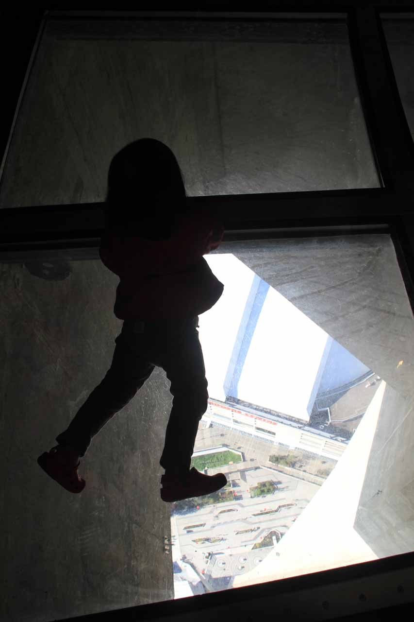 Tahia checking out the glass floor of the CN Tower