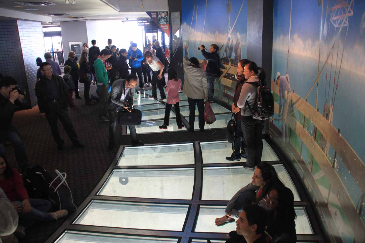 Lots of people enjoying the glass floor in the CN Tower