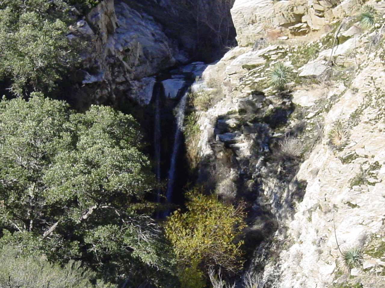 Partial view of Trail Canyon Falls from the trail
