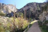 Trail_Canyon_Falls_010_01192013