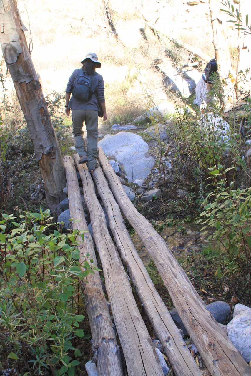 Julie going across a make-shift log bridge