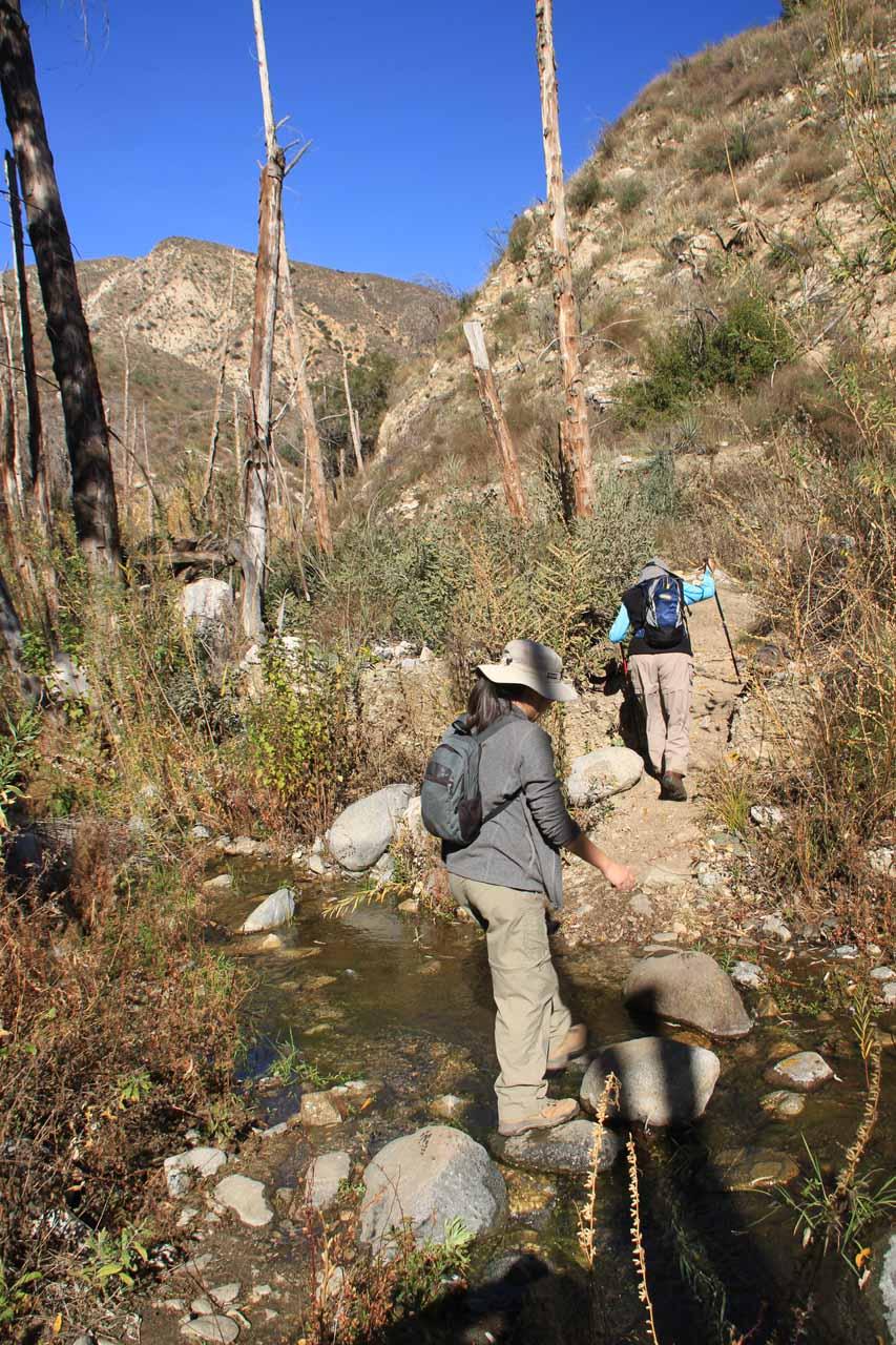 Julie crossing one of several stream crossings