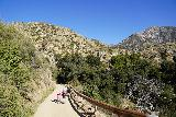 Trail_Canyon_Falls_028_02082020 - Julie and Tahia descending towards the Trail Canyon Falls Day Use Parking and Trailhead on our February 2020 visit. We used to drive to this spot and start the hike from there
