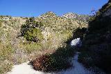 Trail_Canyon_Falls_046_02082020 - A giant boulder near the trail leading to Trail Canyon Falls