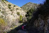 Trail_Canyon_Falls_051_02082020 - Trail Canyon narrowing again as we were about to cross Golden Creek a few times during our February 2020 hike