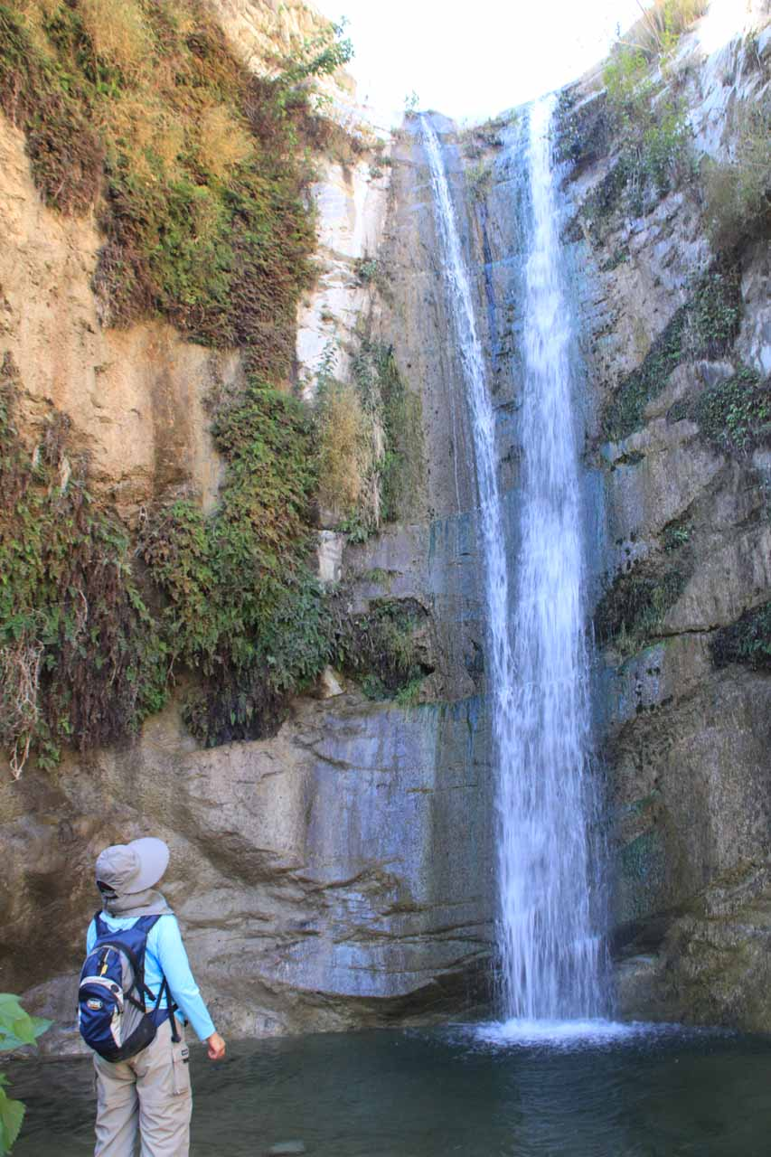 Mom checking out Trail Canyon Falls