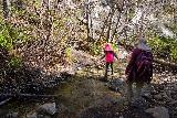Trail_Canyon_Falls_059_02082020 - One of a handful of shallow creek crossings en route to Trail Canyon Falls in February 2020