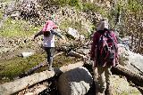 Trail_Canyon_Falls_292_02082020 - Julie and Tahia back to doing stream crossings (Tahia treating the logs like balance beams) on the return hike from Trail Canyon Falls