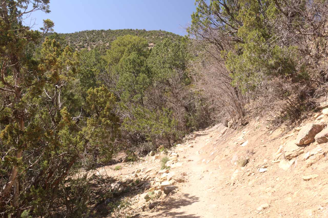 Following the conventional dirt trail that was leading gently uphill from the trailhead to the Travertine Falls