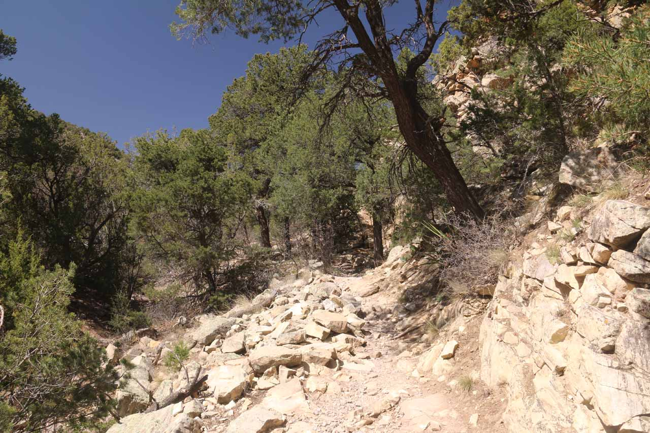Some parts of the Travertine Falls Trail were a little bit on the rocky side, but for all intents and purposes, the hiking was very straightforward