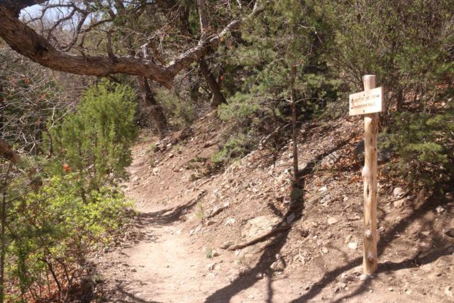 Travertine_Falls_013_04142017 - A signed trail junction where going ahead went to the Travertine Falls while going up the switchback to the right was the Crest Trail No. 130