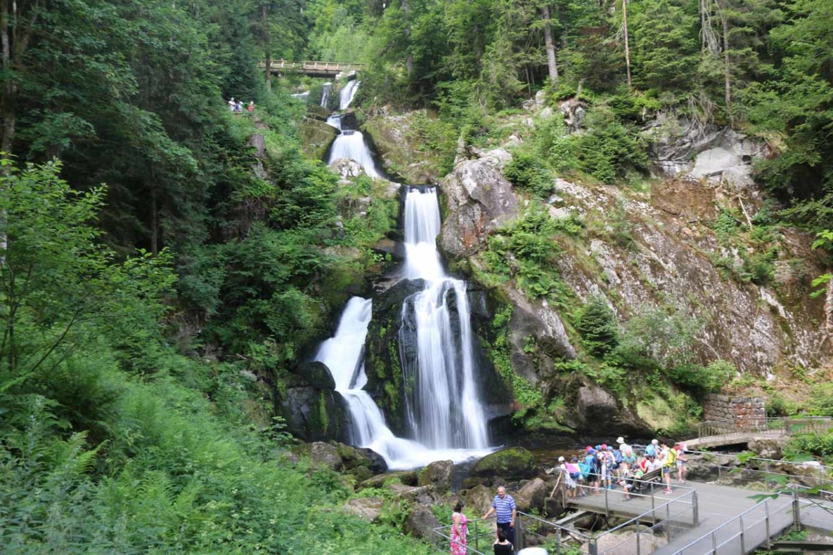 One of many drops of the Triberg Waterfalls