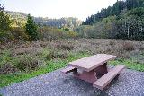 Trillium_Falls_103_11212020 - This particular picnic table at the Elk Meadow Picnic Area would be a real nice chill out spot to see elk if they happened to be grazing the meadow in the background