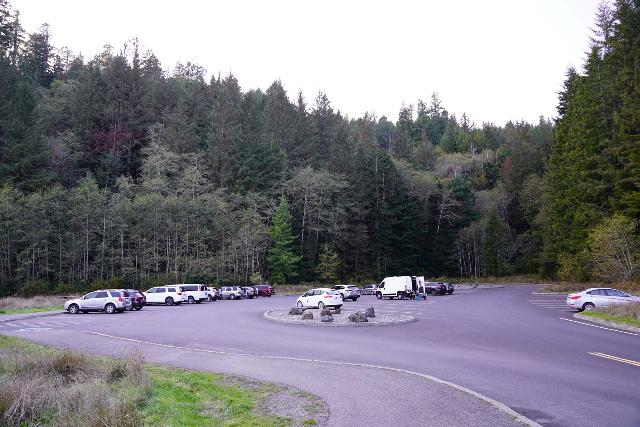 Trillium_Falls_111_11212020 - This was the spacious parking lot for the Elk Meadow Picnic Area