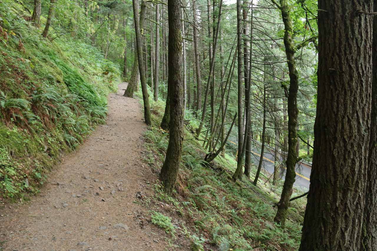 The Oneonta Trail quickly climbed high above the Historic Columbia River Highway