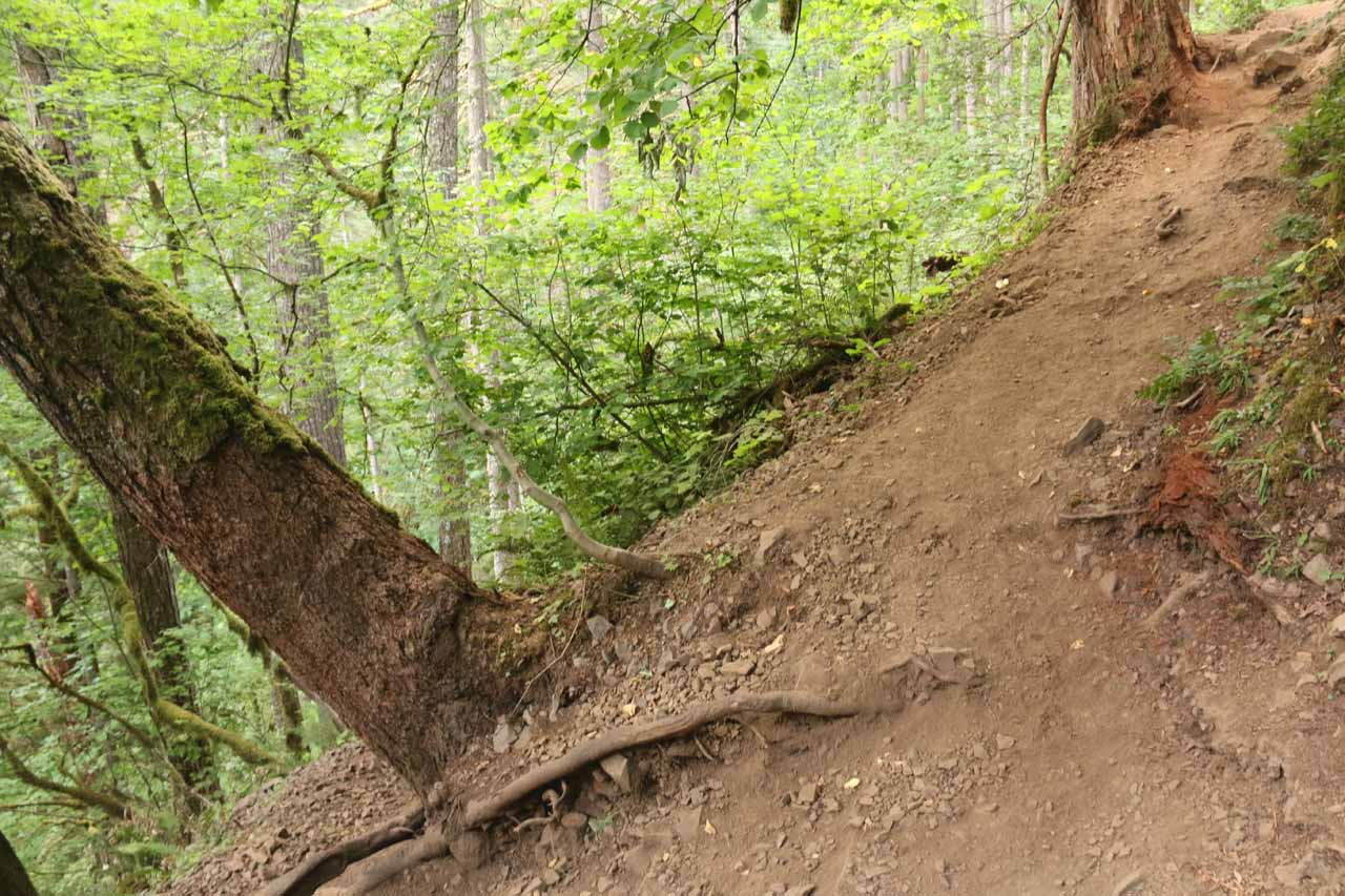Towards one end of the rockslide area, there was this eroded switchback