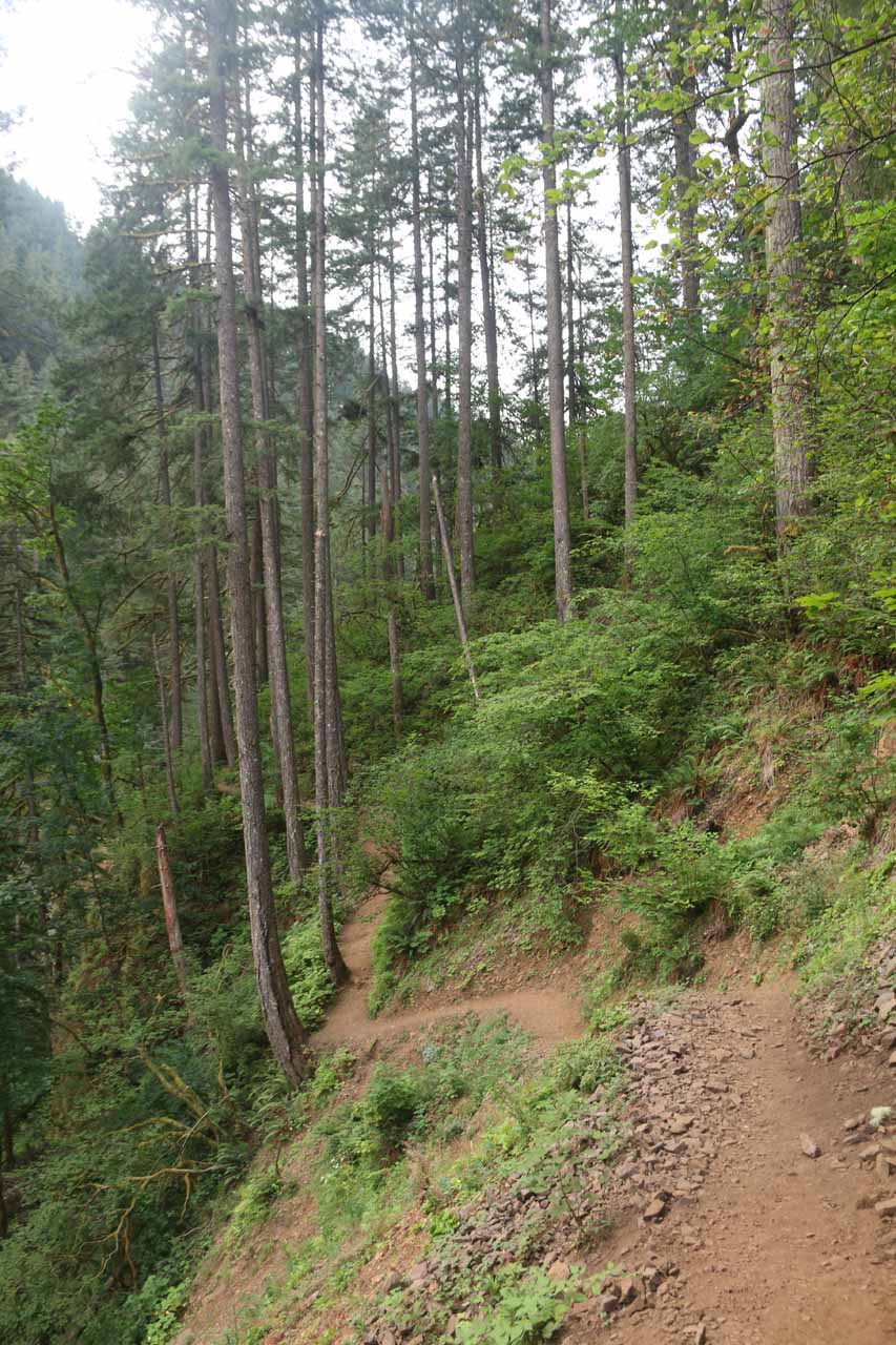 Beyond the rockslide part, the trail narrowed even more and clung to steep slopes like this section