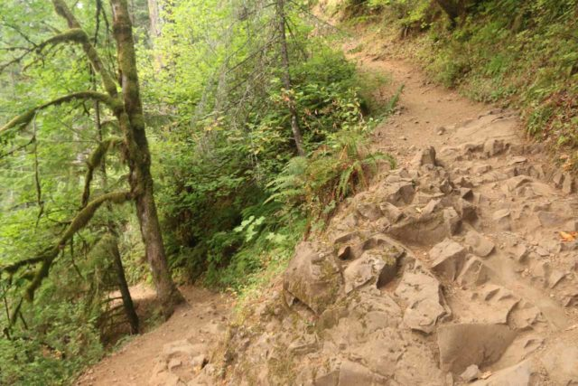 Triple_Falls_CRG_062_08172017 - One of a handful of steep switchbacks on the way to Triple Falls beyond the trail junction with the Horsetail Falls Trail