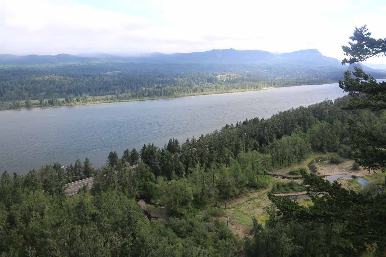 Looking east from the precipitous 'viewpoint' over the Columbia River Gorge. This view was only attainable after following use trails to the outcrop where vegetation didn't obstruct views to the east