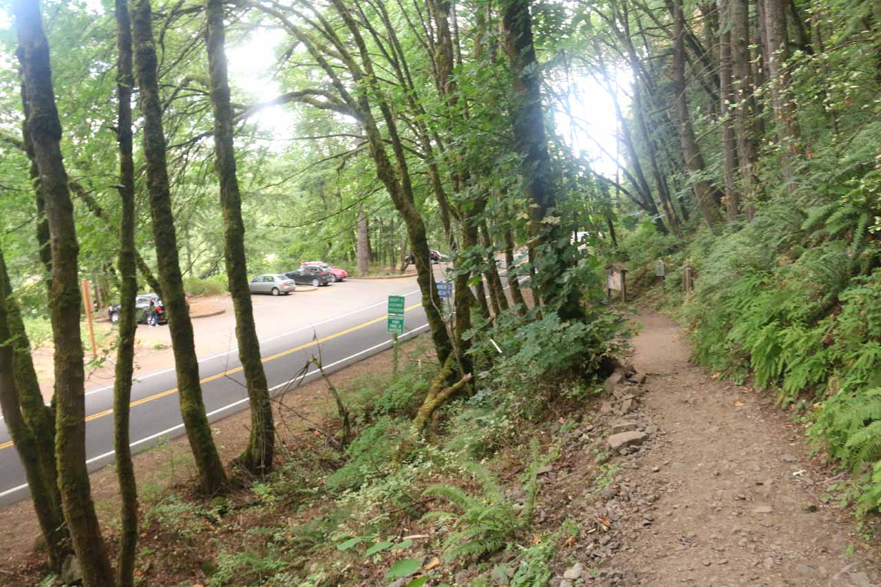 Returning to the Oneonta Trailhead where there were now quite a few more cars parked there