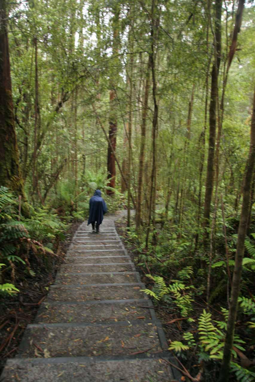 Julie walking down steps towards Triple Falls