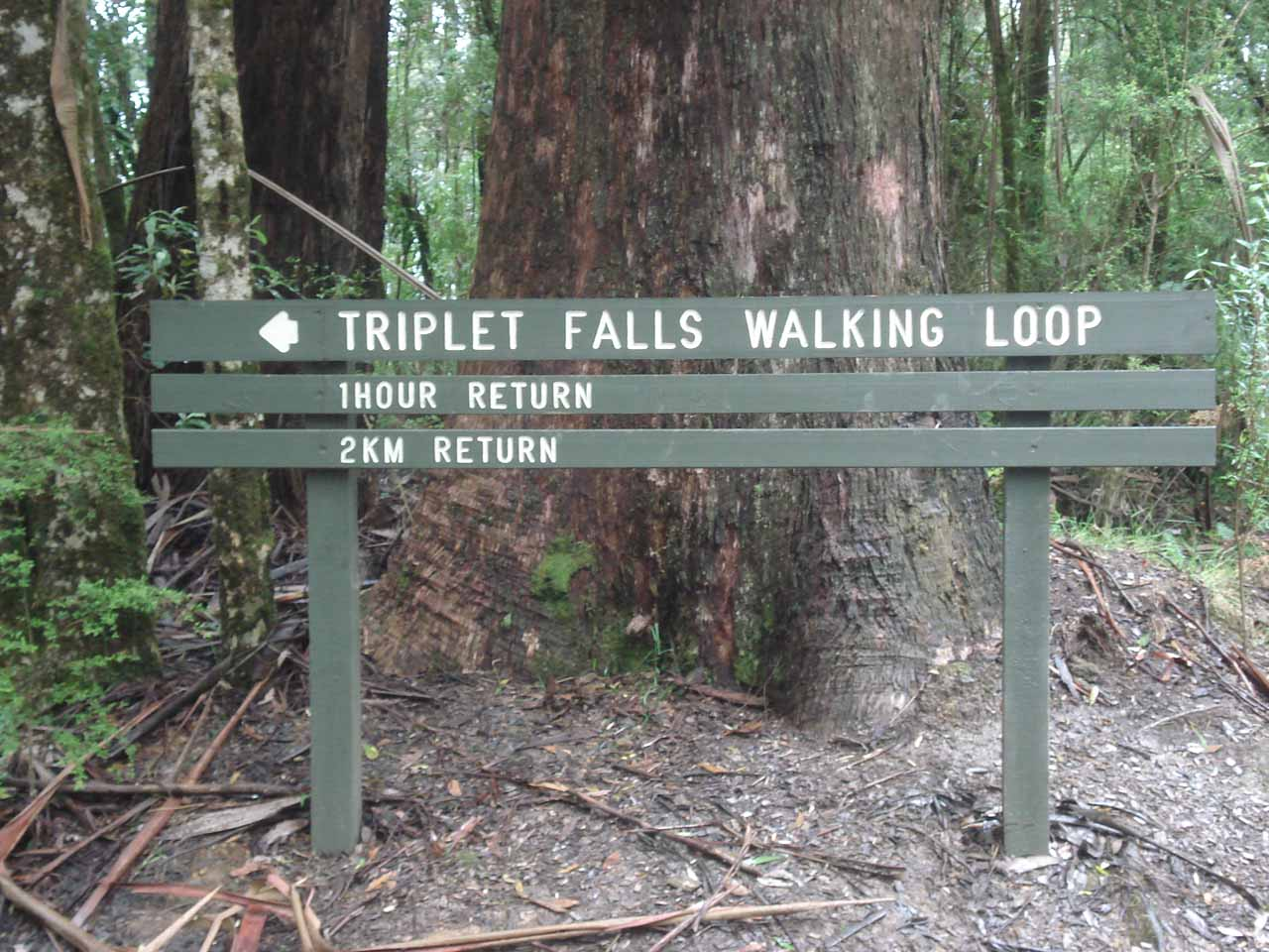 The signpost at the trailhead telling us what we were in for when trying to visit Triplet Falls