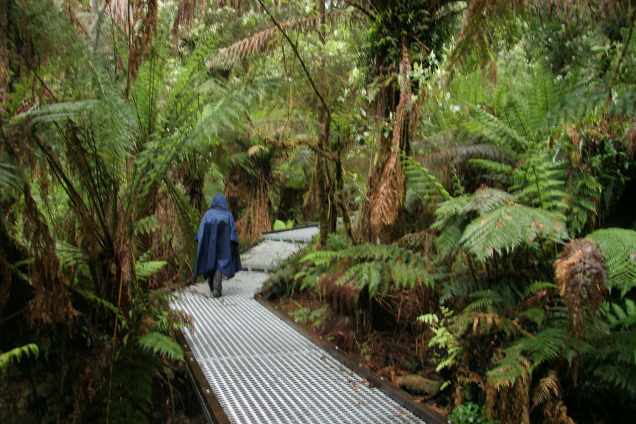 On the walkway to Triplet Falls