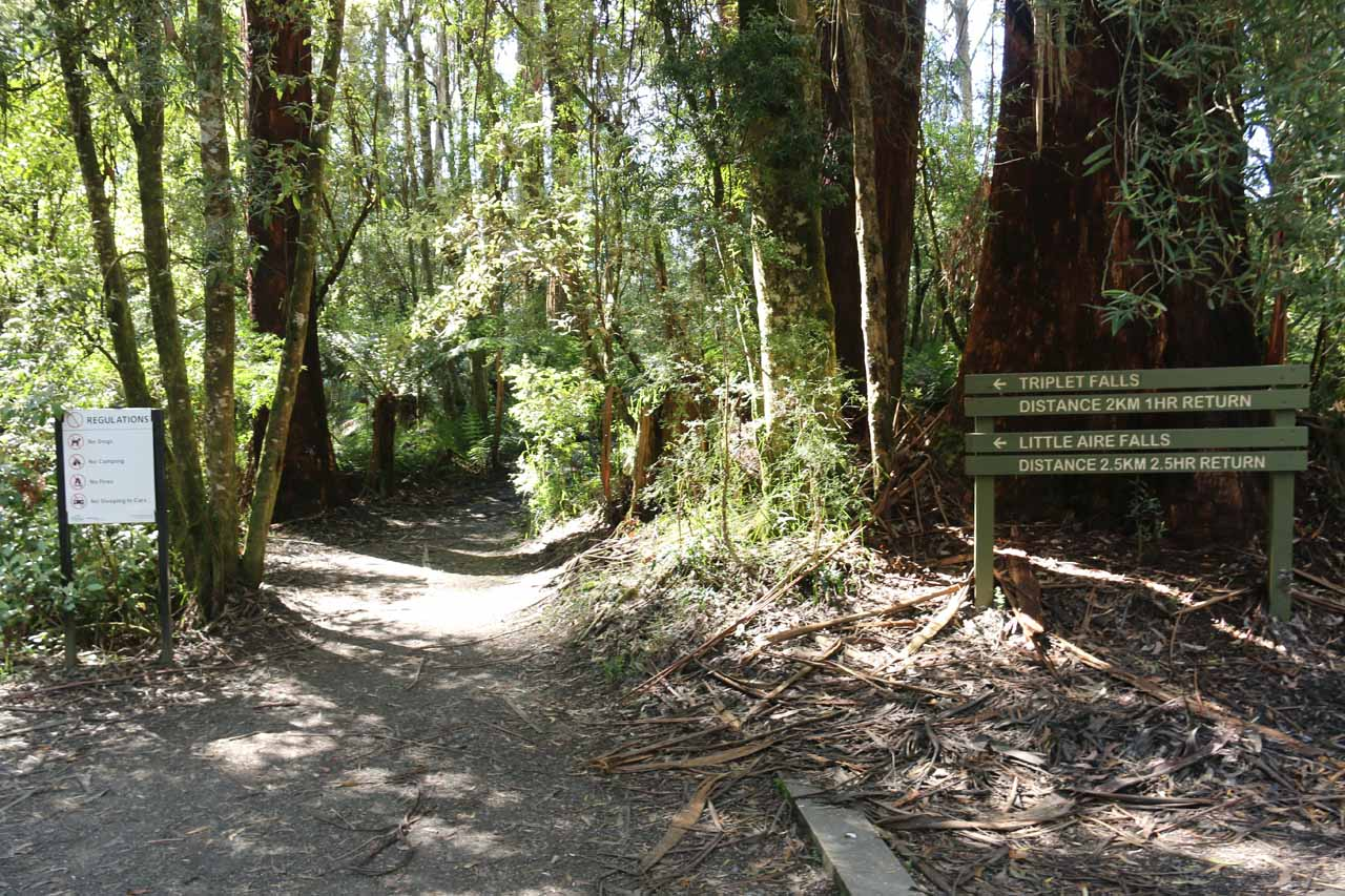 The start of the loop track to Triplet Falls