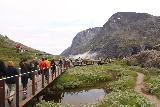 Trollstigen_100_07172019 - Large procession of people on the boardwalks, which gives you an idea of how crowded and busy it can get at Trollstigen