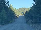 Tumalo_Falls_002_iPhone_06272021 - On the unpaved road leading to Tumalo Falls