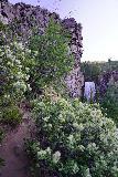 Tumalo_Falls_077_06272021 - Looking back at the context of the narrow footpath leading to Tumalo Falls as I'm headed back