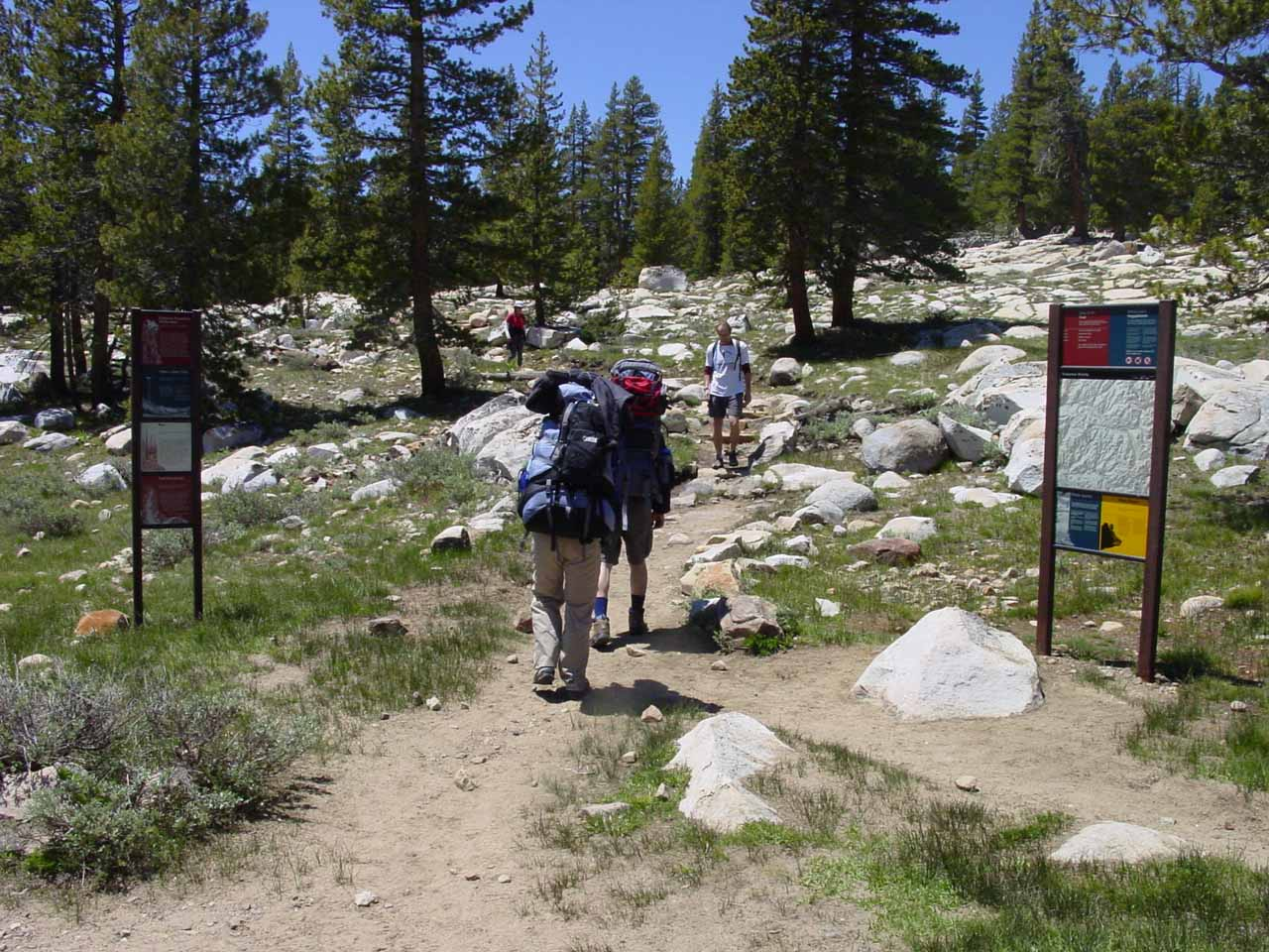 Now on the formal trail beyond the network of trails near the Soda Springs and Parson's Lodge area