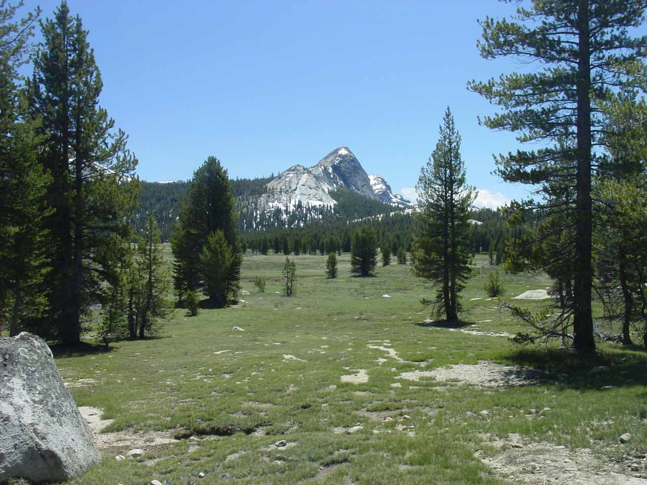 When starting out on the hike towards Tuolumne Falls, we had to pass through the vast Tuolumne Meadows, which featured a large meadow backed by attractive granite peaks like Fairview Dome shown in this photo