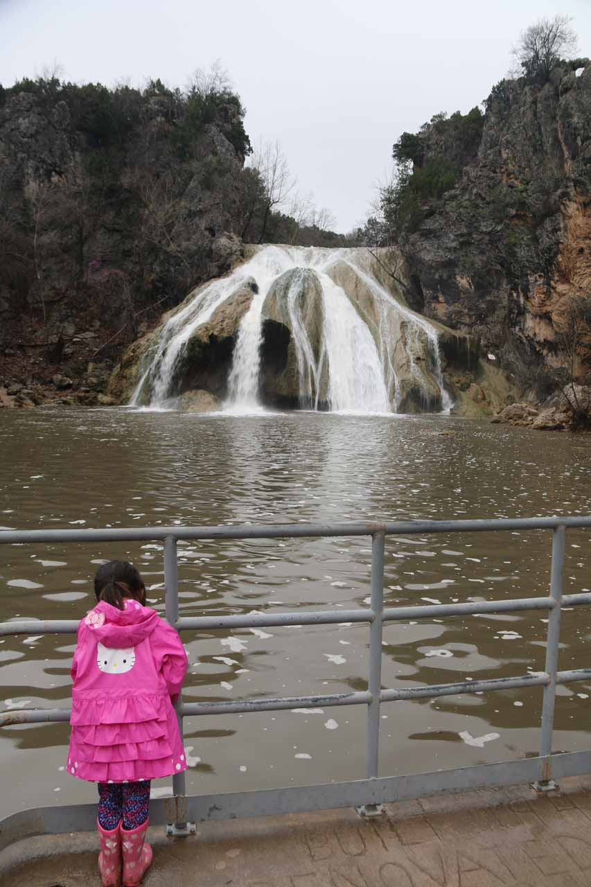 Tahia checking out Turner Falls from the bridge