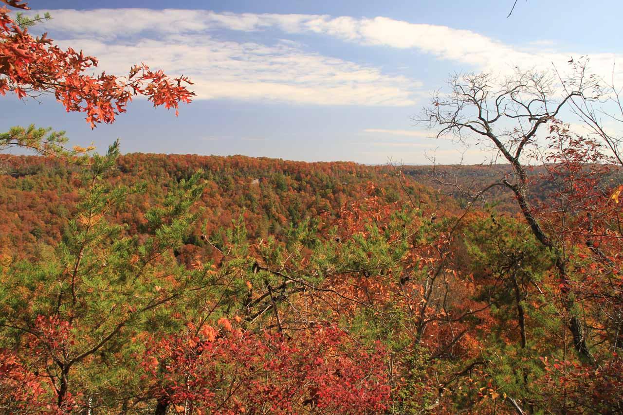 Beautiful Fall colors everywhere