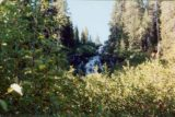 Twin_Falls_003_scanned_09022001 - As close to the Twin Falls as I was able to get on my overgrown bush scramble to get a closer look in September 2001