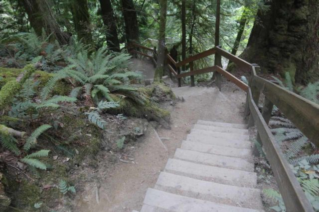 Twin_Falls_Olallie_17_054_07302017 - Descending these steps towards the overlook right above the main drop of Twin Falls