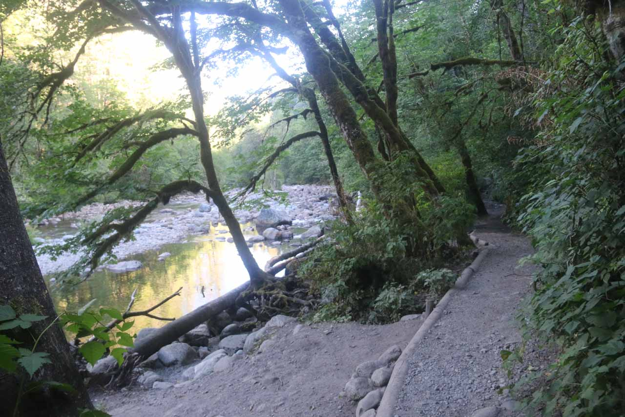 Hiking alongside the South Fork Snoqualmie River as I was making my way back to the trailhead
