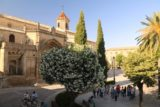 Ubeda_073_05302015 - Back at the Plaza de Primero de Mayo in Ubeda