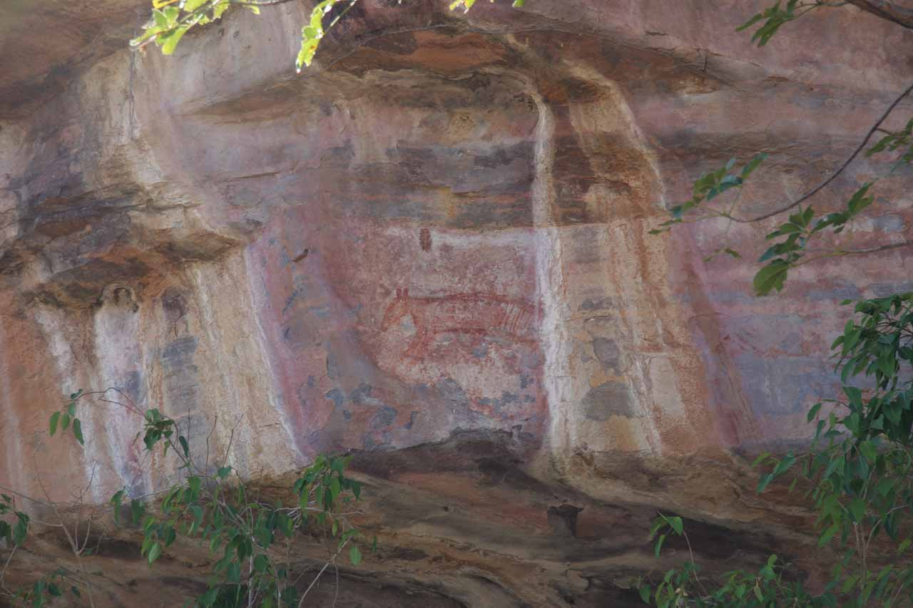 Some kind of four-legged animal drawing at Ubirr