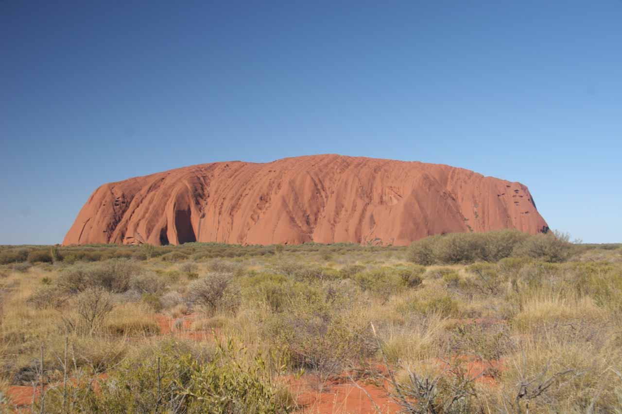 Back at Uluru