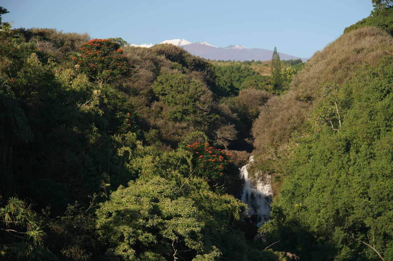 Mauna Kea backing one of the Lower Umauma Waterfalls