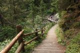 Umbal_Waterfalls_197_07162018 - Descending from the Umbalfalle Waterfalls to the bridge before the Grossbachfall