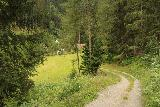 Umbal_Waterfalls_256_07162018 - I did take some time to explore this other path leading closer to the Umbalbach near the Virgental Valley just to see where this trail went