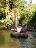 Umphang_Wildlife_Sanctuary_022_jx_01022009