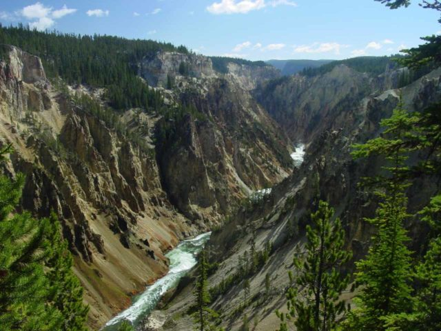 Uncle_Toms_Trail_026_06212004 - Looking downstream at Yellowstone's namesake yellow cliffs from the Uncle Tom's Trail